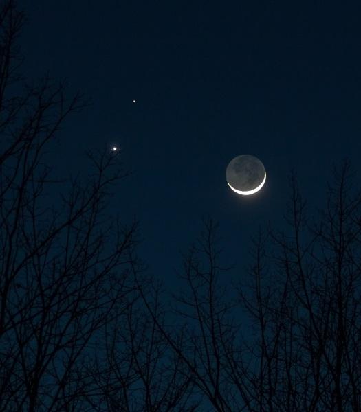 Planet Waves :: Your Monday Morning Horoscope